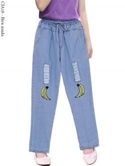 CJA18 Celana Jeans Anak Bordir
